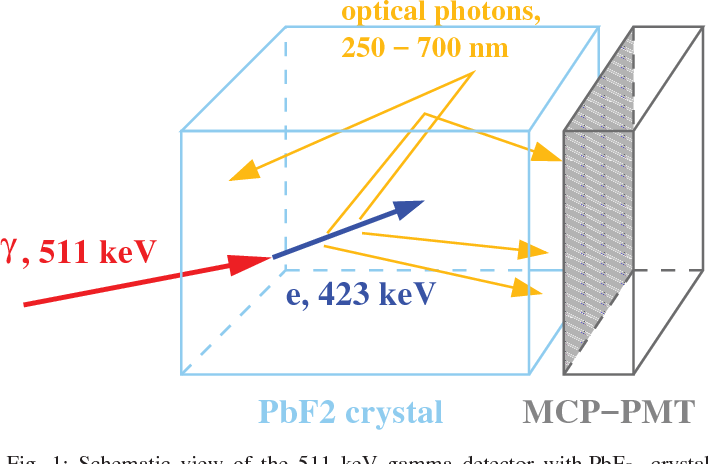 Fig. 1: Schematic view of the 511 keV gamma detector with PbF2 crystal to detect Cherenkov radiation from 511 keV gamma.