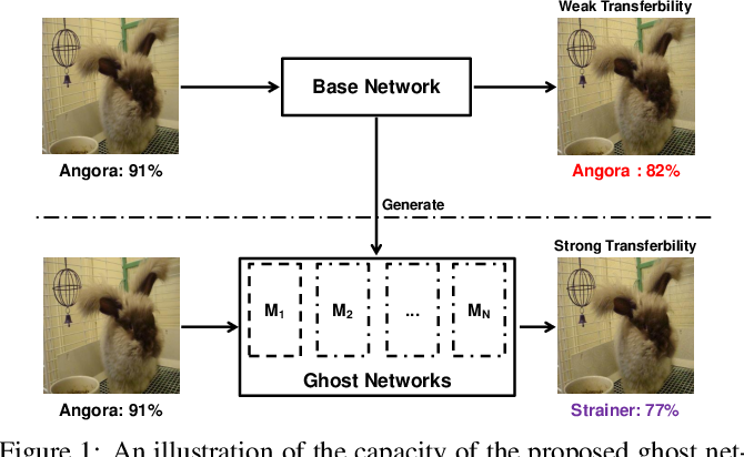 Figure 1 for Learning Transferable Adversarial Examples via Ghost Networks