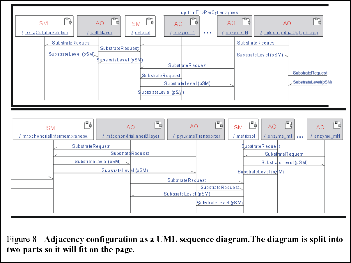 Figure 8 from uml as a cell and biochemistry modeling language figure 8 adjacency configuration as a uml sequence diagrame diagram is split into ccuart Image collections