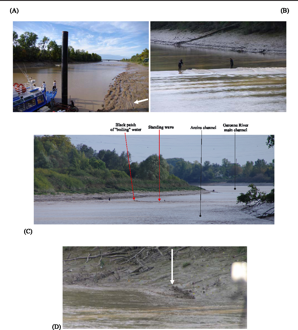 Figure 5. Tidal bore of the Garonne River in the Arcins channel on 19 October 2013. (A) Approaching bore, looking downstream about 17:06 (white arrows points to longitudinal bed forms); (B) upstream propagation of undular bore at 17:07; (C) tidal bore collision at 17:10:15; (D) upstream propagation of 'backward' bore (white arrow) of the Garonne River in the Arcins channel at 17:15:13. This figure is available in colour online at wileyonlinelibrary.com/journal/espl