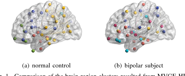 Figure 1 for Multi-view Graph Embedding with Hub Detection for Brain Network Analysis