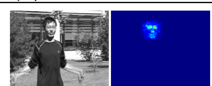 Figure 3 for Online Tracking by Learning Discriminative Saliency Map with Convolutional Neural Network