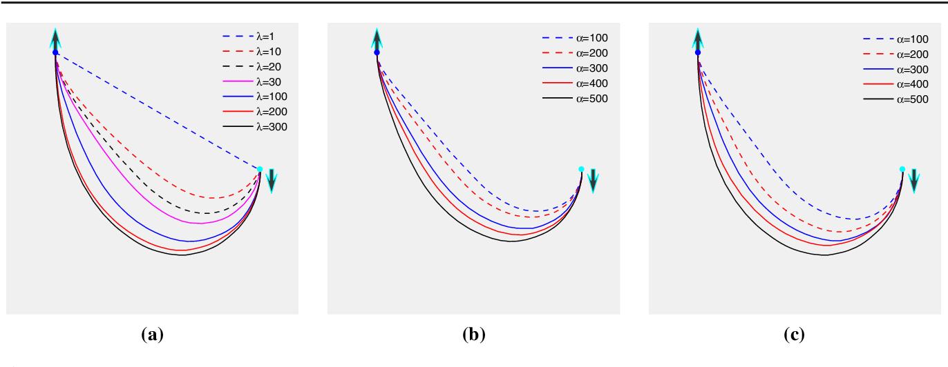 Figure 4 for Global Minimum for a Finsler Elastica Minimal Path Approach
