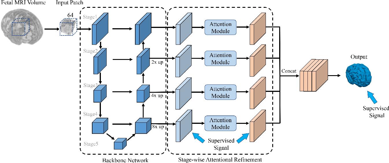 Figure 2 for A Deep Attentive Convolutional Neural Network for Automatic Cortical Plate Segmentation in Fetal MRI