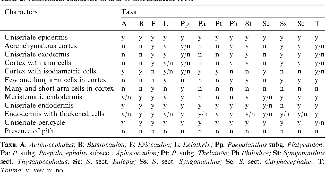 Anatomy of Brazilian Eriocaulaceae: correlation with taxonomy and ...