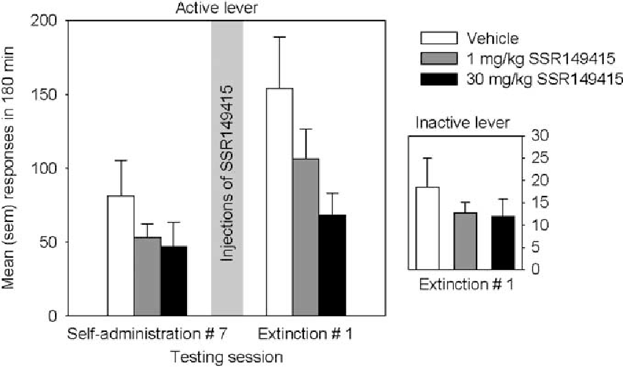 Figure 5 Mean (SEM) responses on the active lever and on the inactive lever during the last day of heroin self-administration and the first session of extinction given 48 h later. Thirty minutes before this extinction session, rats received injections of vehicle (n¼ 12), SSR149415 at 1 mg/kg (n¼ 12), and SSR149415 at 30 mg/kg (n¼ 9). Significant difference between the last self-administration and the first extinction sessions.