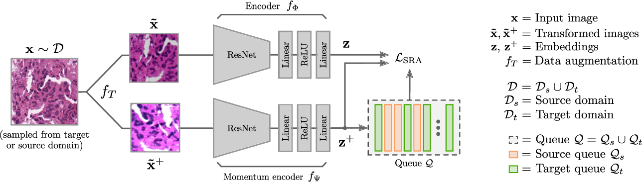 Figure 1 for Self-Rule to Adapt: Generalized Multi-source Feature Learning Using Unsupervised Domain Adaptation for Colorectal Cancer Tissue Detection