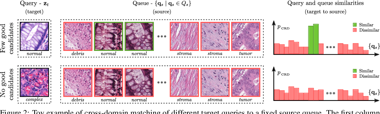 Figure 3 for Self-Rule to Adapt: Generalized Multi-source Feature Learning Using Unsupervised Domain Adaptation for Colorectal Cancer Tissue Detection