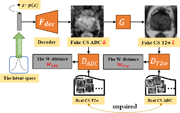 Figure 2 for Semi-supervised mp-MRI Data Synthesis with StitchLayer and Auxiliary Distance Maximization