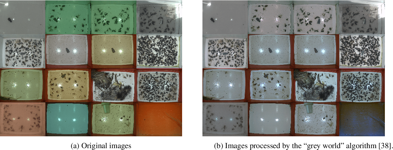 Figure 3 for Automatic Moth Detection from Trap Images for Pest Management