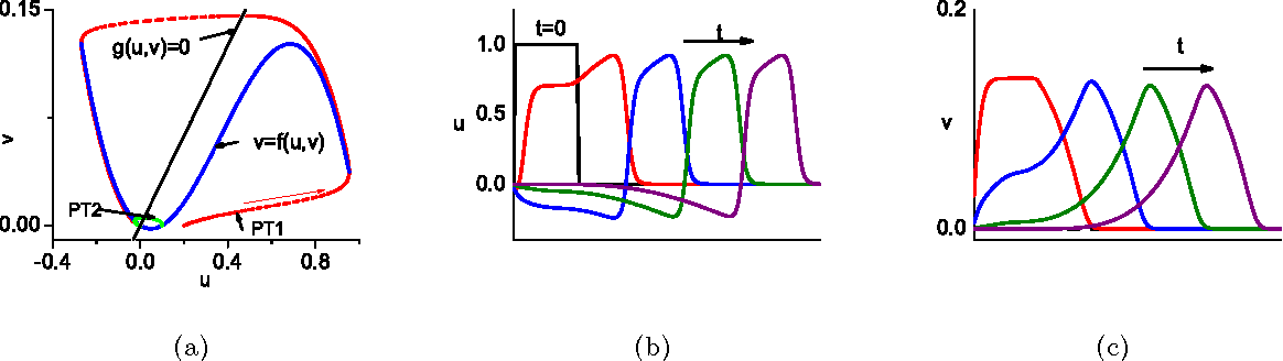 Spatio Temporal Modeling Of Wave Formation In An Excitable Chemical