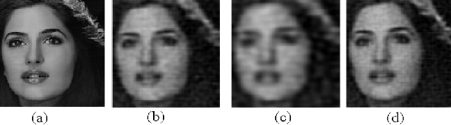 Figure 3 for Progressive versus Random Projections for Compressive Capture of Images, Lightfields and Higher Dimensional Visual Signals
