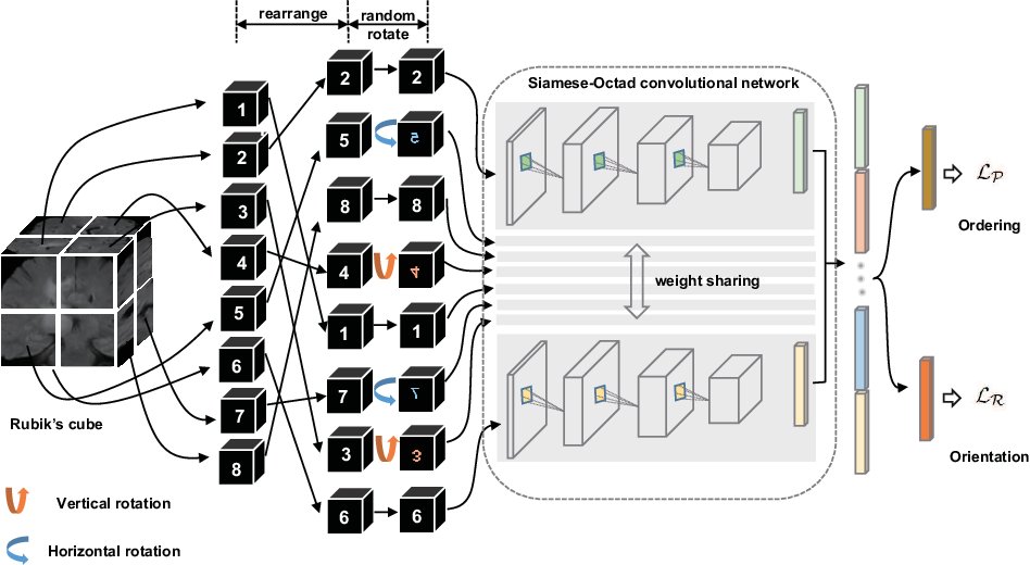 Figure 1 for Self-supervised Feature Learning for 3D Medical Images by Playing a Rubik's Cube