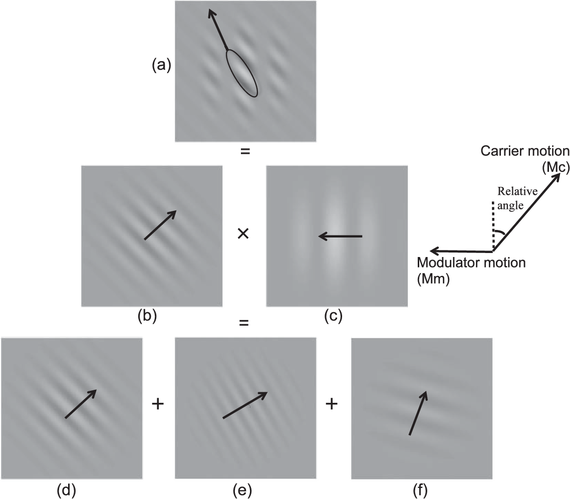 Figure 3 from A moving-barber-pole illusion  - Semantic Scholar