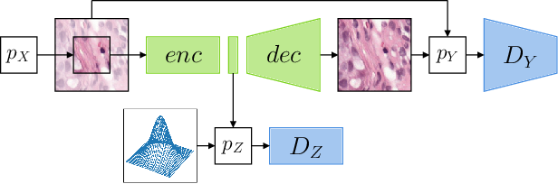 Figure 1 for Self-Supervised Representation Learning using Visual Field Expansion on Digital Pathology