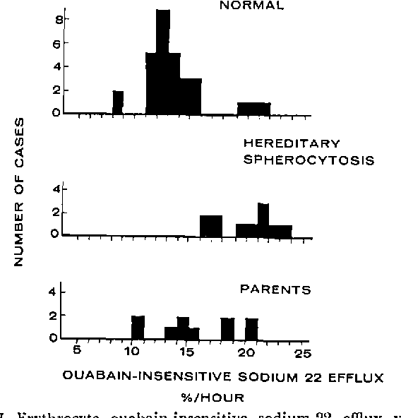 Significance Of Erythrocyte Sodium Flux In The Pathophysiology And