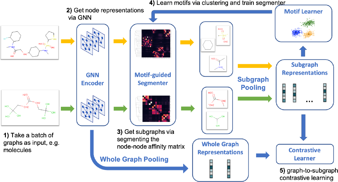 Figure 1 for Motif-Driven Contrastive Learning of Graph Representations