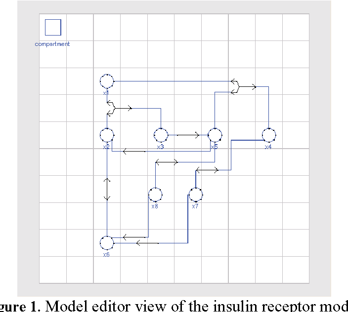 Figure 1. Model editor view of the insulin receptor model.