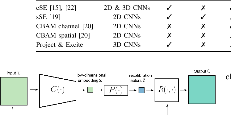 Figure 2 for Recalibrating 3D ConvNets with Project & Excite