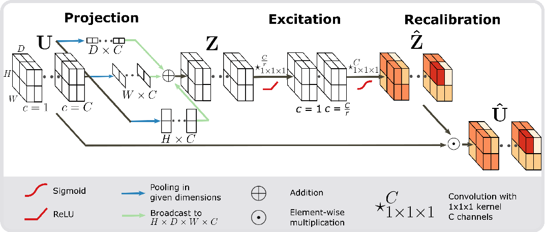 Figure 3 for Recalibrating 3D ConvNets with Project & Excite