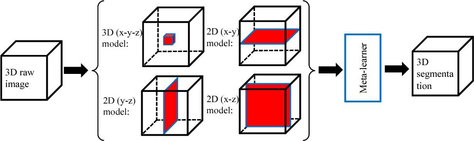 Figure 1 for A New Ensemble Learning Framework for 3D Biomedical Image Segmentation