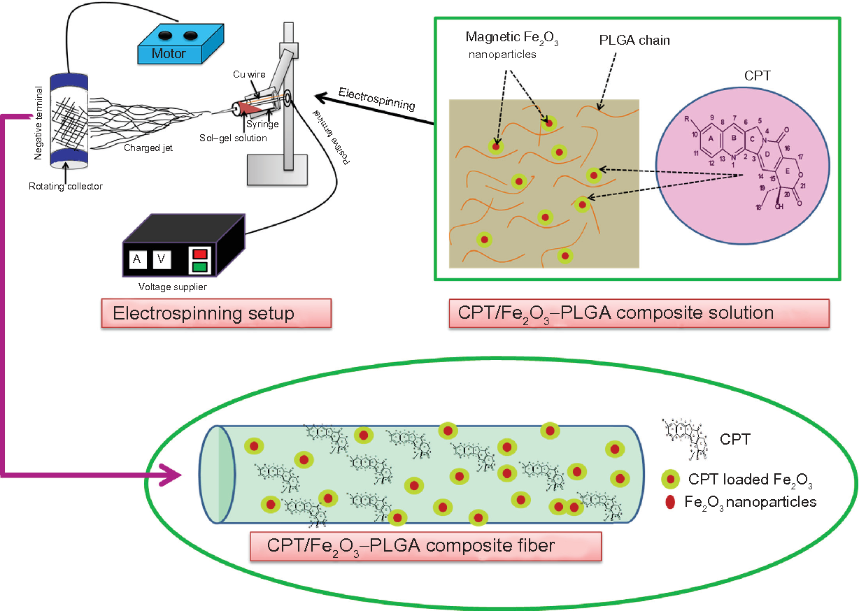 Preparation Characterization And Cytotoxicity Of Cpt Fe2o3 Wiring Diagram Figure 1