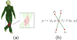 Figure 2 for Long-Range Motion Trajectories Extraction of Articulated Human Using Mesh Evolution