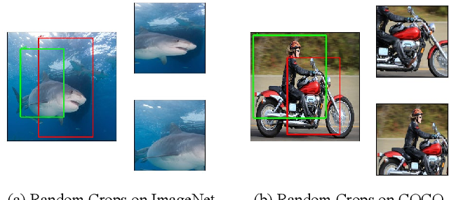 Figure 3 for Self-EMD: Self-Supervised Object Detection without ImageNet