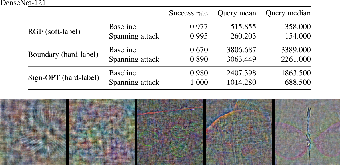 Figure 4 for Spanning Attack: Reinforce Black-box Attacks with Unlabeled Data