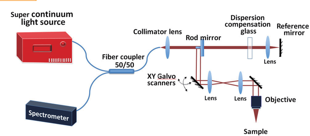 Figure 1 for Segmentation of Drosophila Heart in Optical Coherence Microscopy Images Using Convolutional Neural Networks