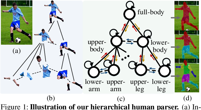 Figure 1 for Hierarchical Human Parsing with Typed Part-Relation Reasoning