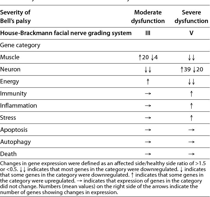 Facial nerve grading system
