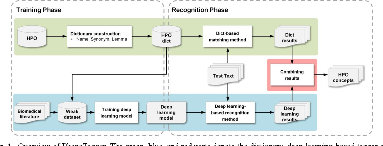 Figure 1 for PhenoTagger: A Hybrid Method for Phenotype Concept Recognition using Human Phenotype Ontology