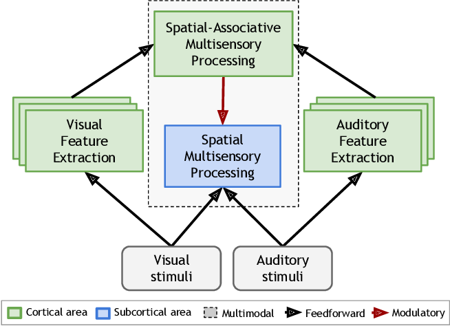Figure 1 for Towards Modeling the Interaction of Spatial-Associative Neural Network Representations for Multisensory Perception