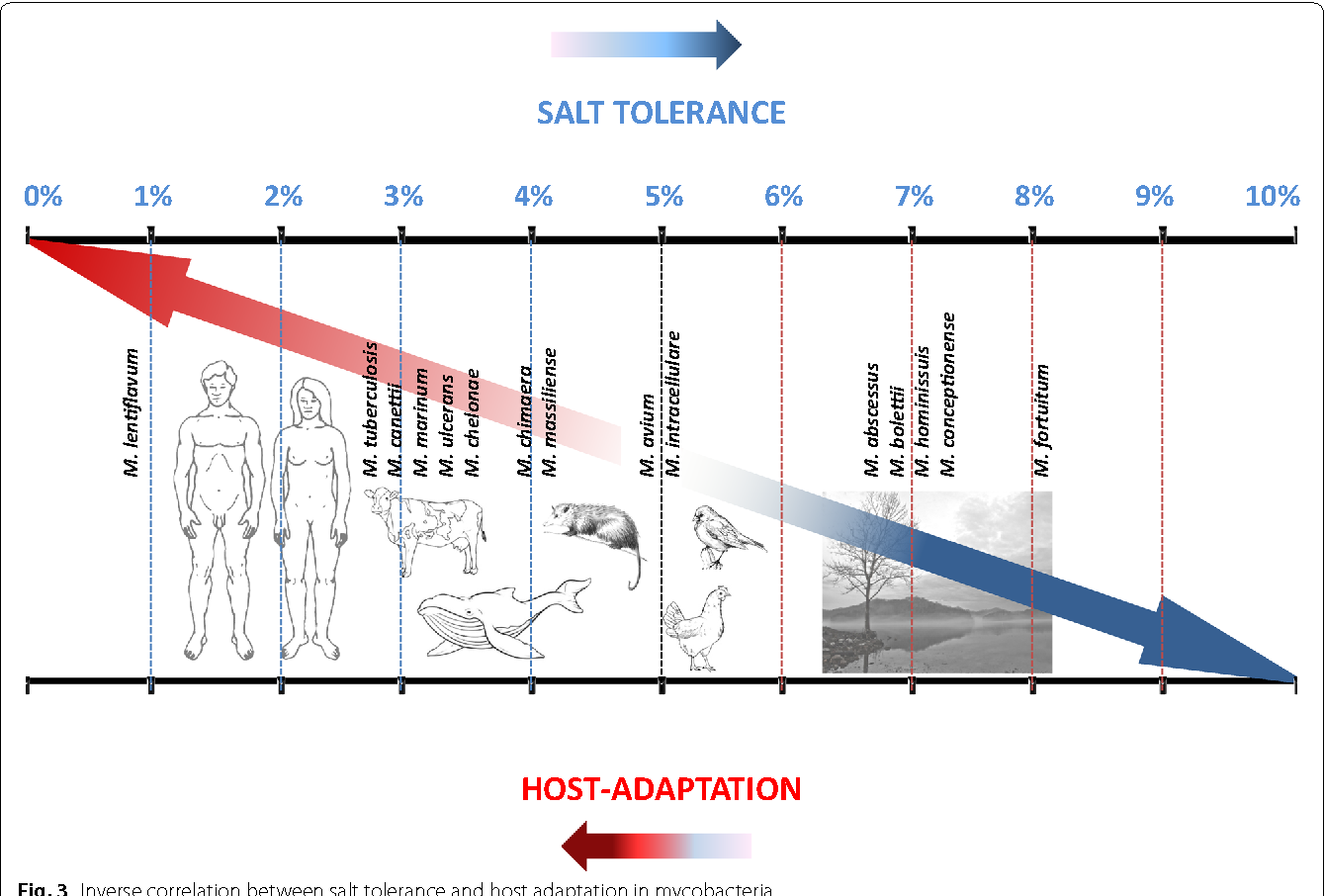 Fig. 3 Inverse correlation between salt tolerance and host adaptation in mycobacteria