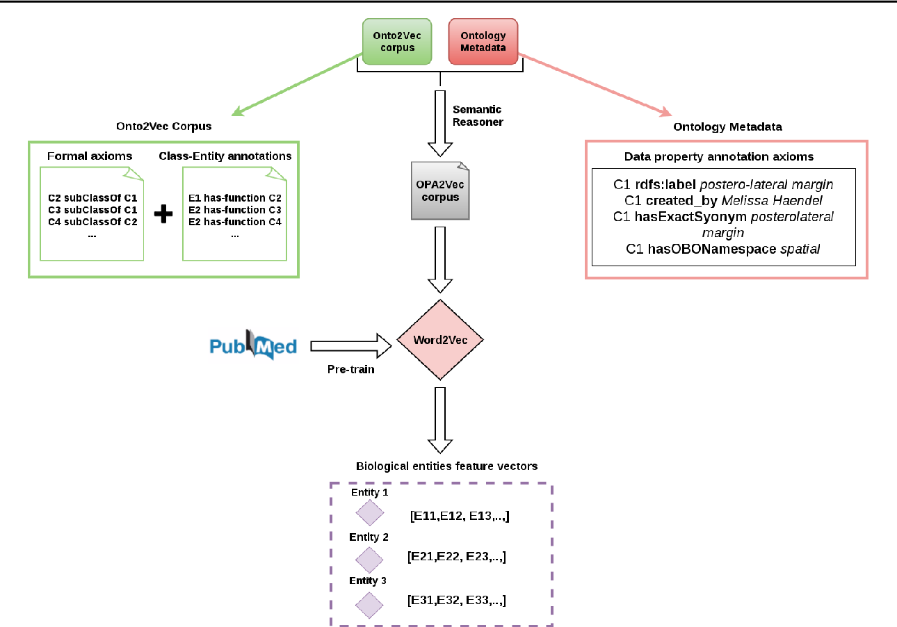 Figure 1 for OPA2Vec: combining formal and informal content of biomedical ontologies to improve similarity-based prediction