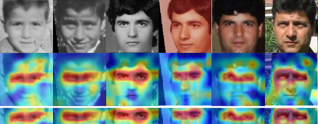 Figure 1 for Beyond Disentangled Representations: An Attentive Angular Distillation Approach to Large-scale Lightweight Age-Invariant Face Recognition