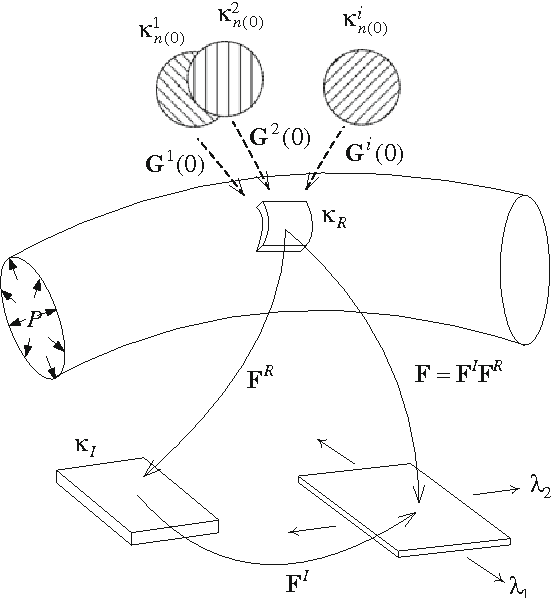 Identification Of In Vivo Material And Geometric Parameters Of A