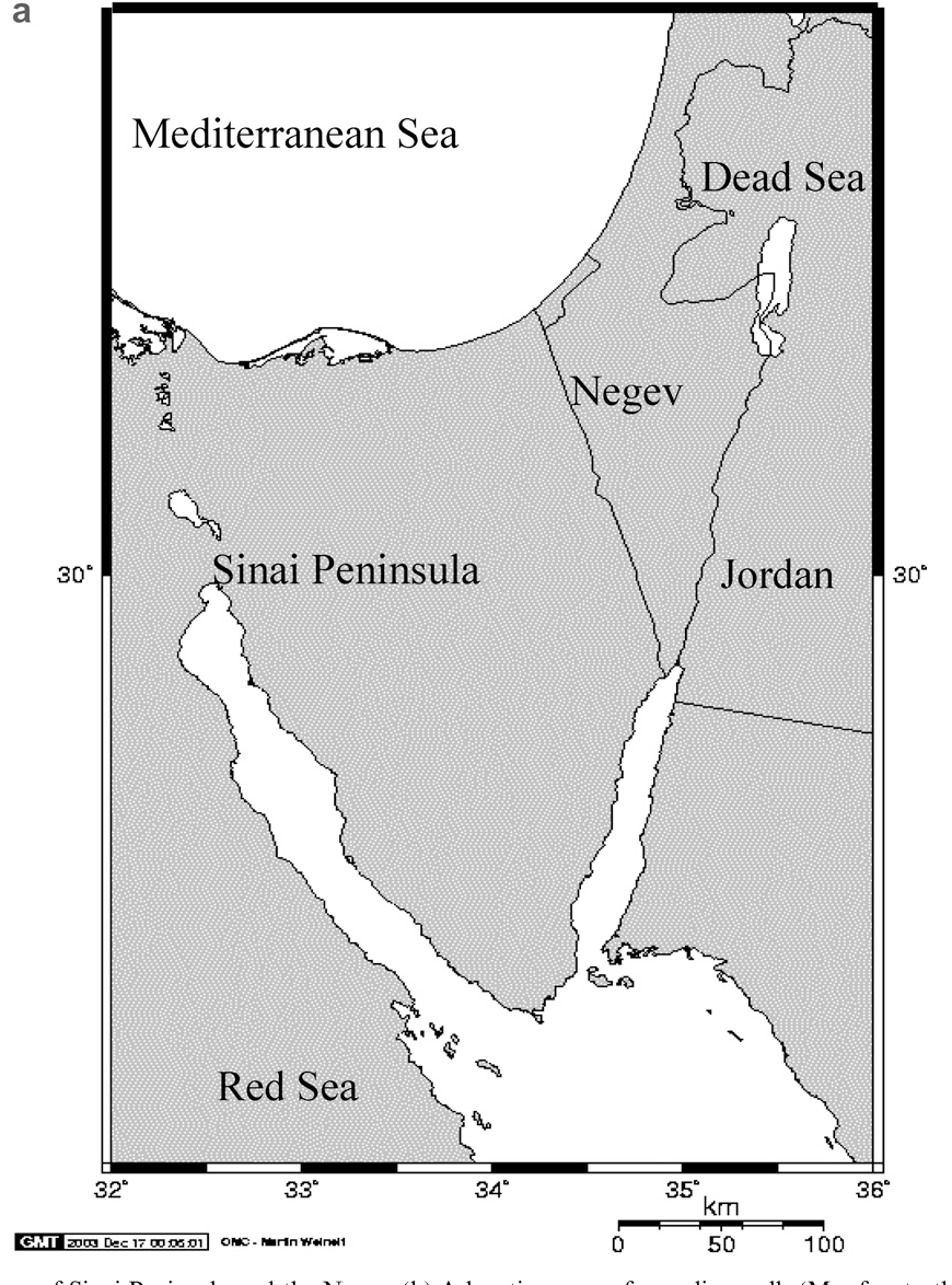 Figure 1 from New isotopic evidence for the origin of groundwater