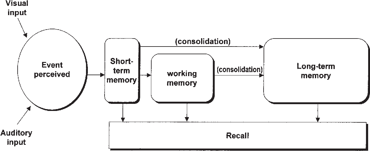 Figure 3 From Memory And The Brain Semantic Scholar