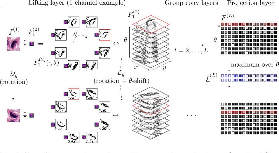 Figure 1 for Roto-Translation Covariant Convolutional Networks for Medical Image Analysis