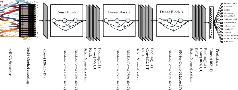 Figure 4 for A Robust and Precise ConvNet for small non-coding RNA classification (RPC-snRC)