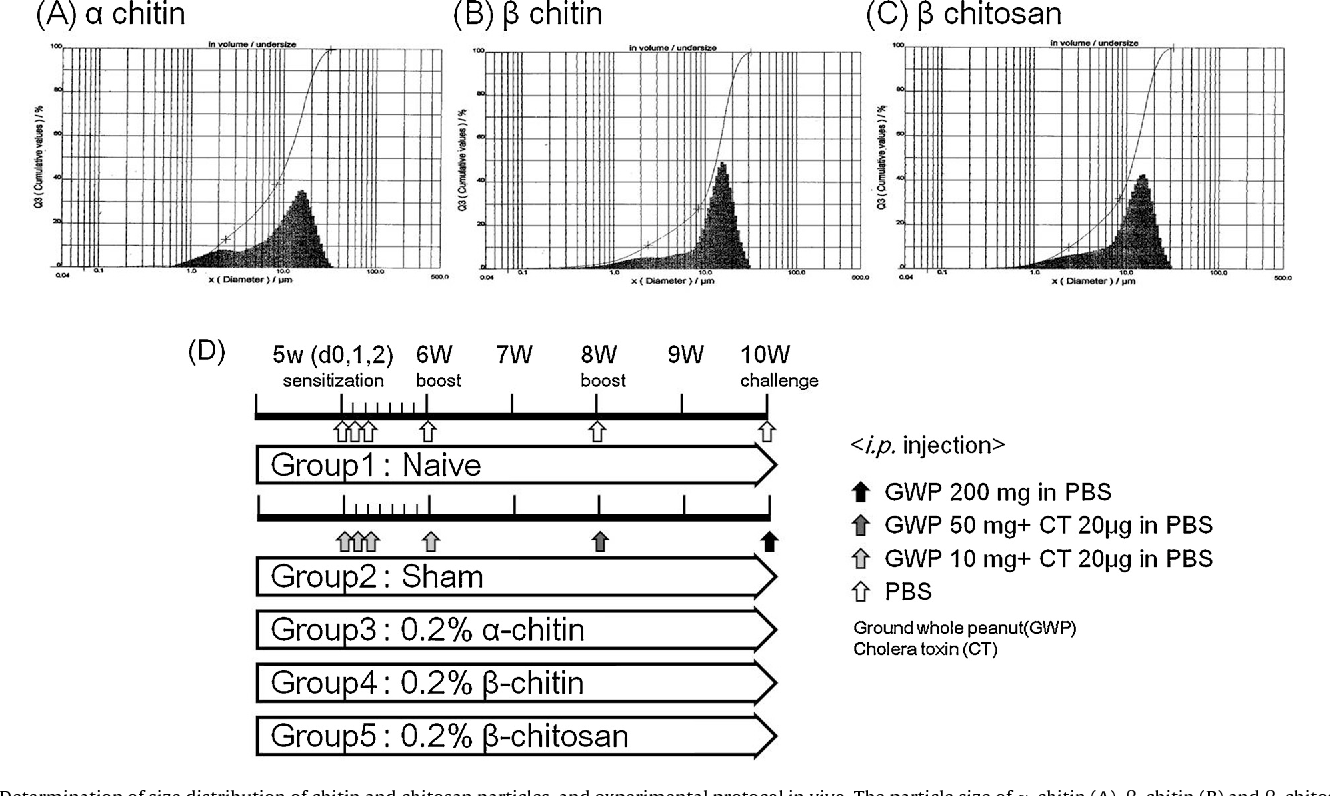 Oral administration of chitin and chitosan prevents peanut