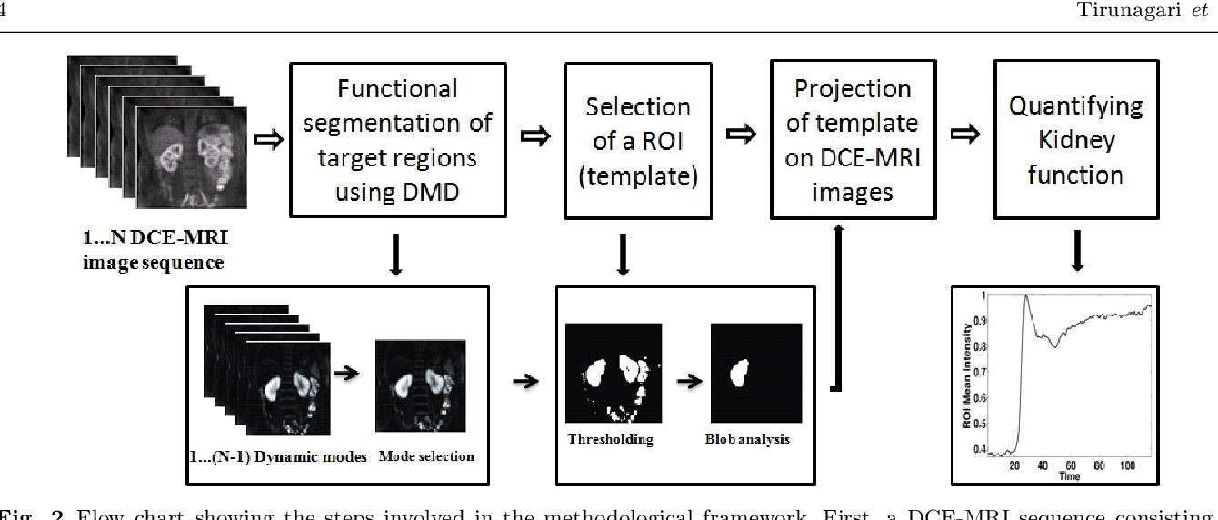 Figure 3 for Functional Segmentation through Dynamic Mode Decomposition: Automatic Quantification of Kidney Function in DCE-MRI Images