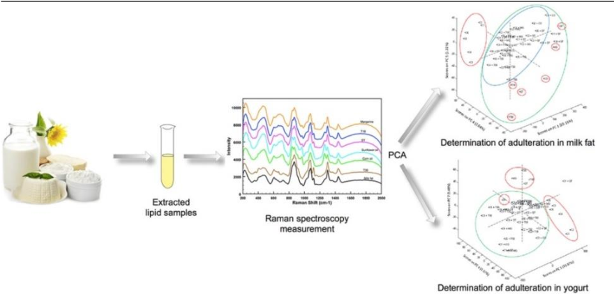 Figure 1 for A review of artificial intelligence methods combined with Raman spectroscopy to identify the composition of substances