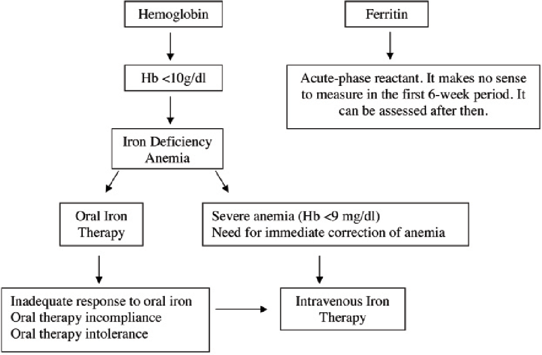 iron deficiency anaemia treatment guidelines
