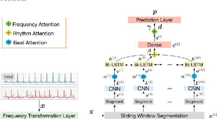 Figure 3 for MINA: Multilevel Knowledge-Guided Attention for Modeling Electrocardiography Signals