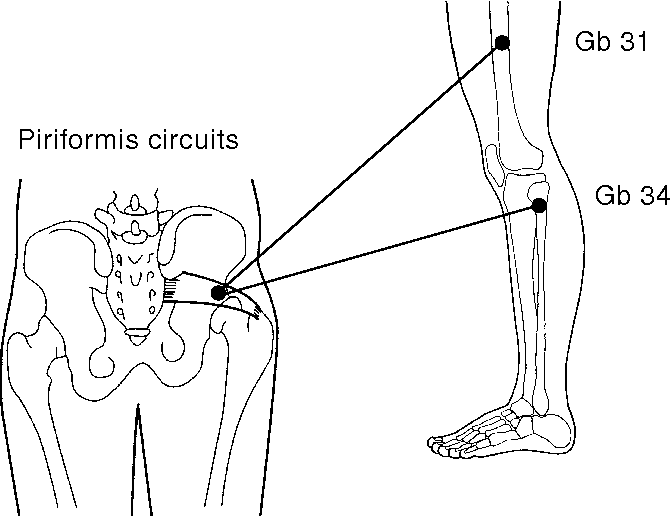 Figure 54 40 from ETPS Neuropathic Acupuncture 54 - Semantic