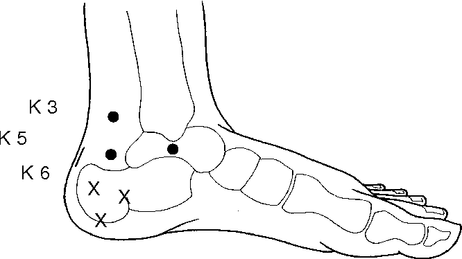 Figure 54 40 from ETPS Neuropathic Acupuncture 54 - Semantic Scholar