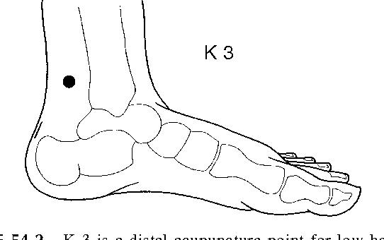 Figure 54 2 from ETPS Neuropathic Acupuncture 54 - Semantic Scholar